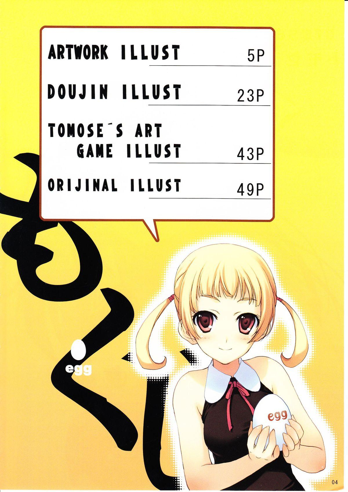 Tomose Shunsaku Jisen Illust Shuu 2