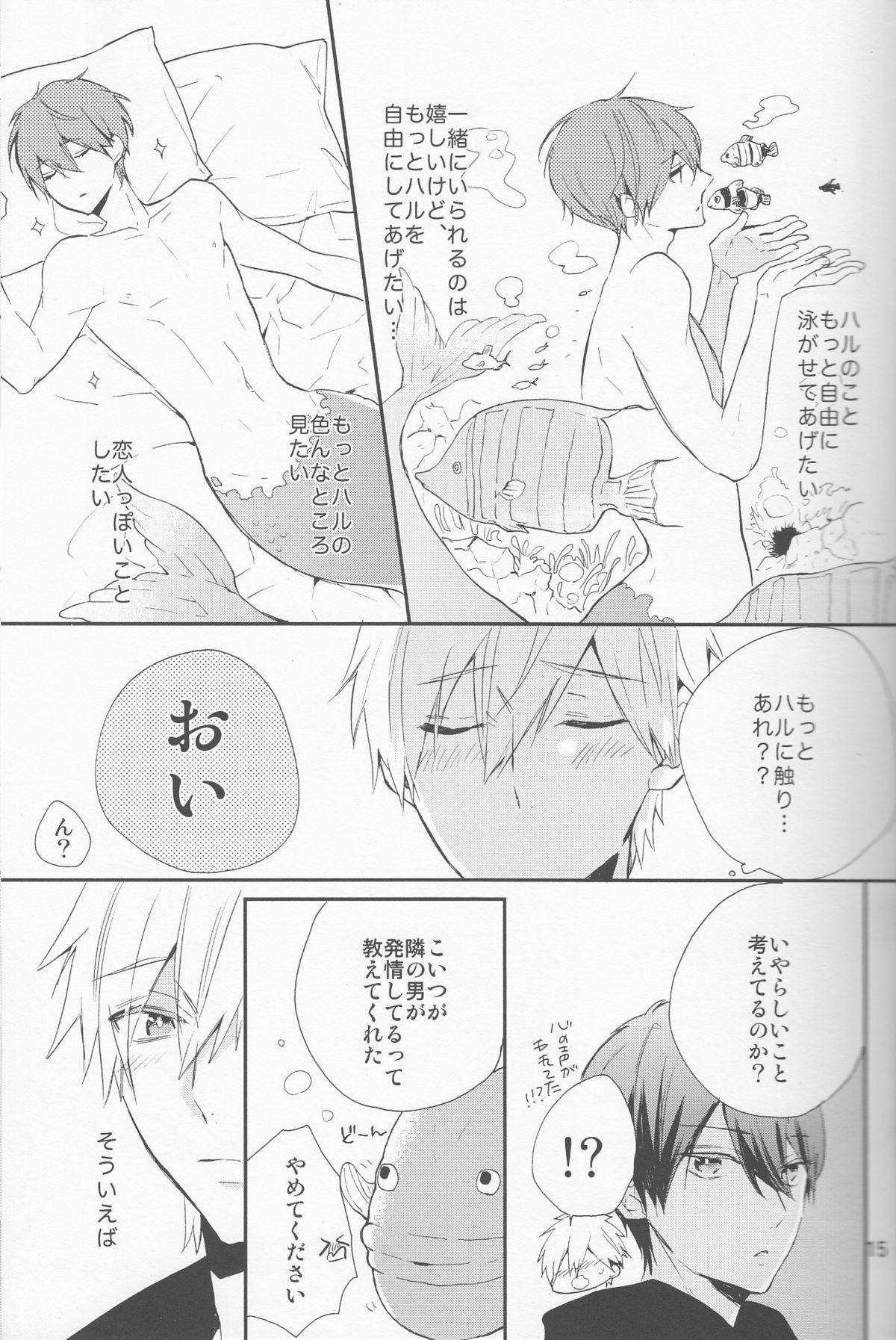 Shouboushi to Ningyo no Hon. 13