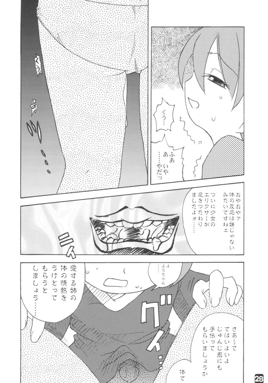 fujisaku 26