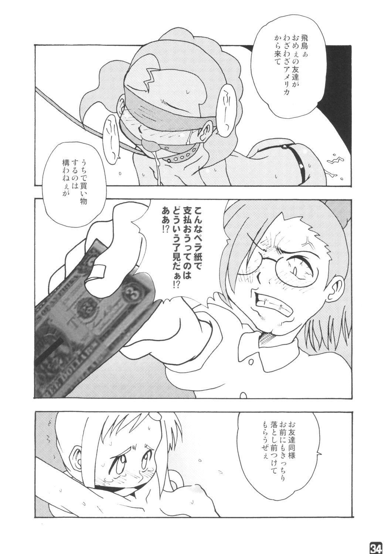 fujisaku 32