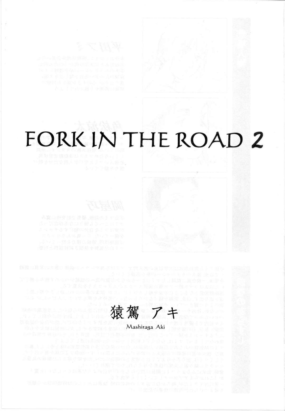 FORK IN THE ROAD 2 1
