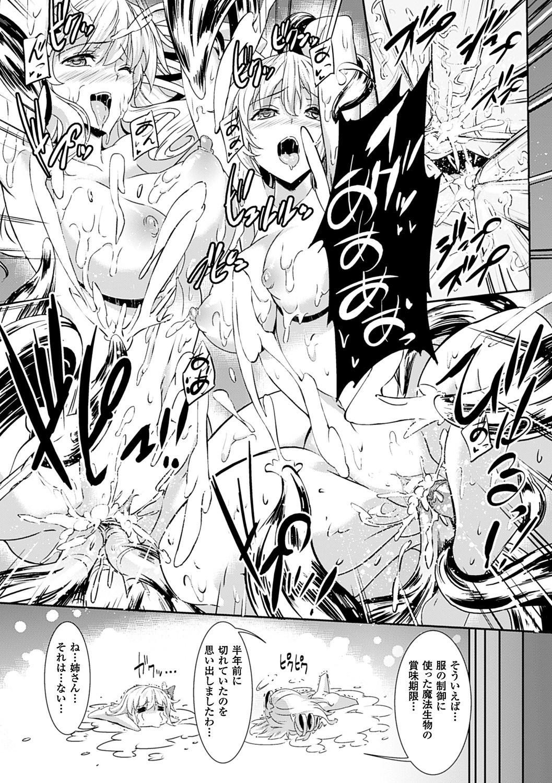 Shinkyoku no Grimoire III 246