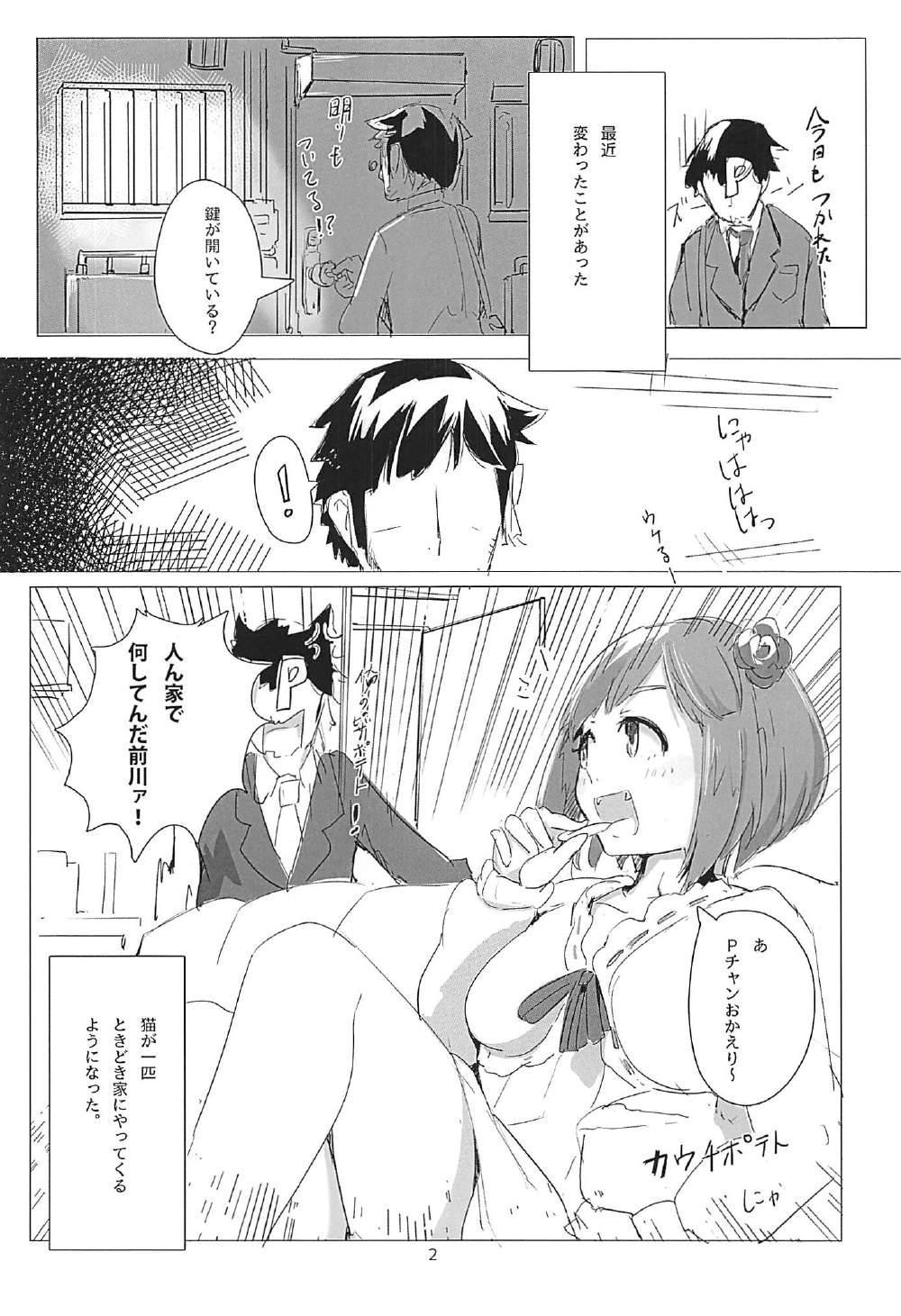 Miku-nyan no Hon 2