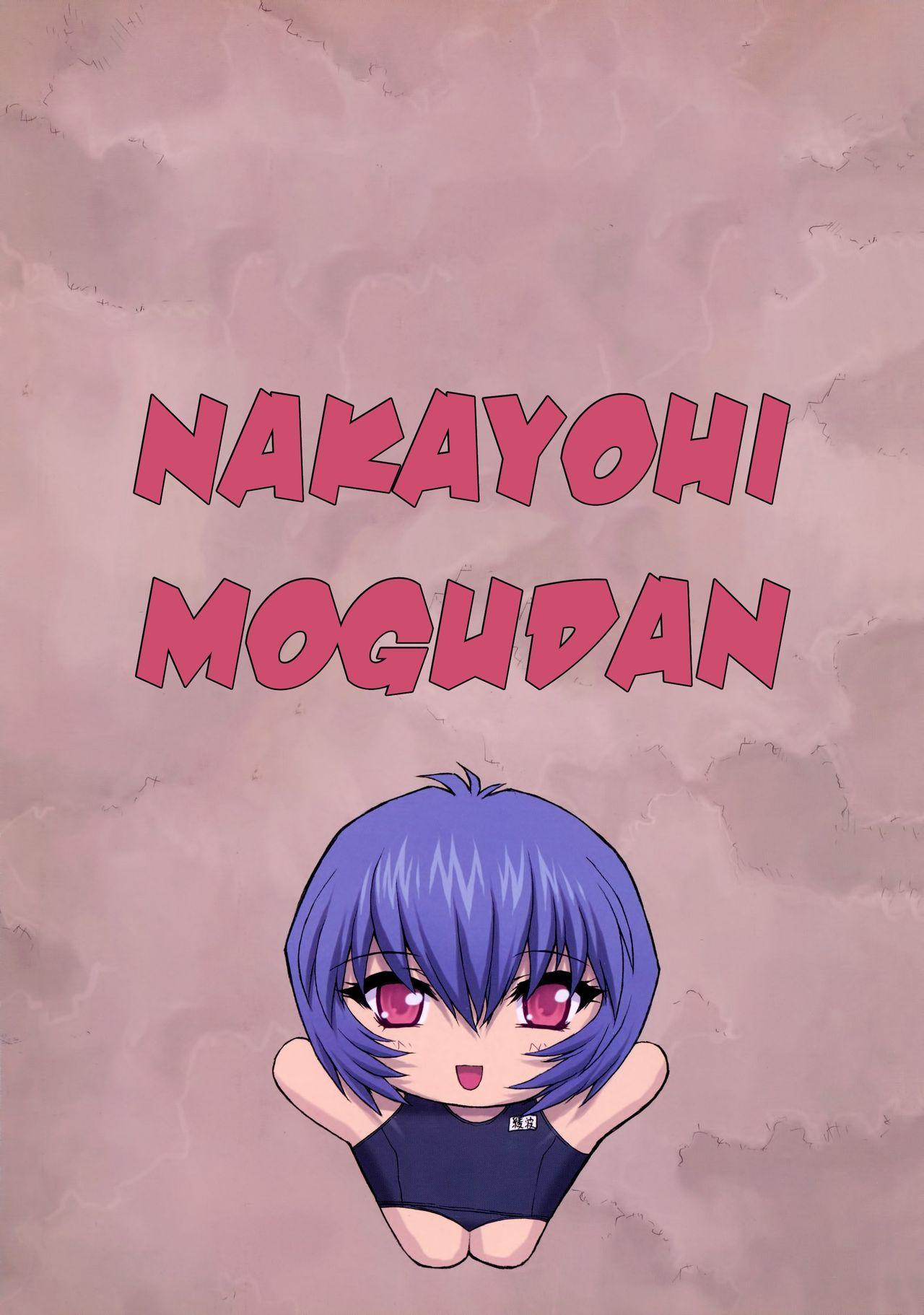 Ayanami 3 Sensei Hen   Ayanami 3 Teacher Edition 2