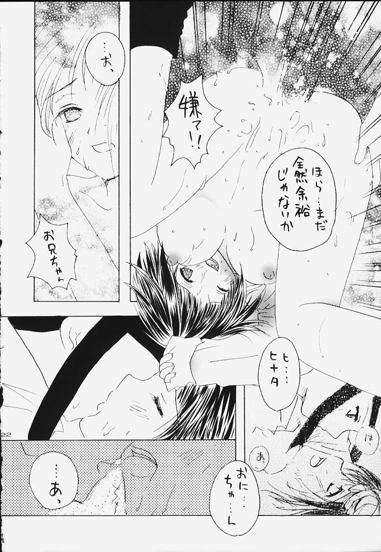 Hogo Kansatsu 20