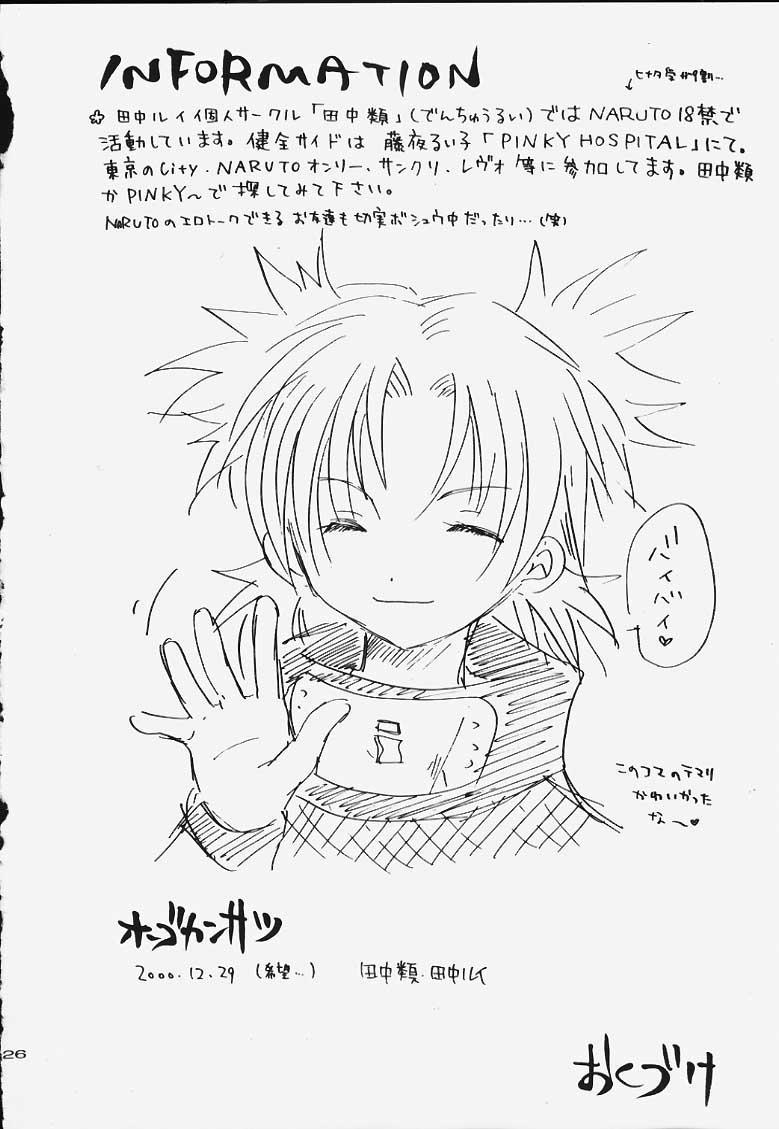 Hogo Kansatsu 24