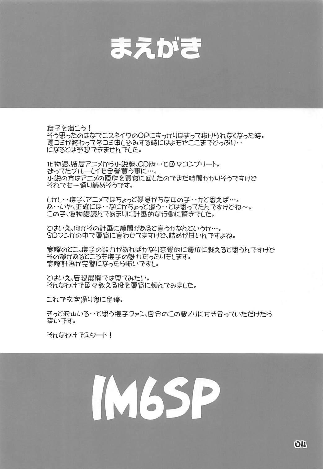 IM6SP 2
