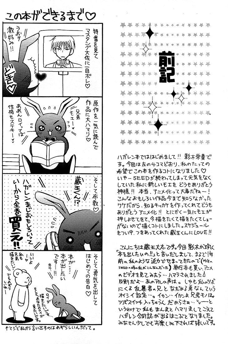 Kokka Renkinjutsushi no Tebiki | State Alchemist's Handbook 2