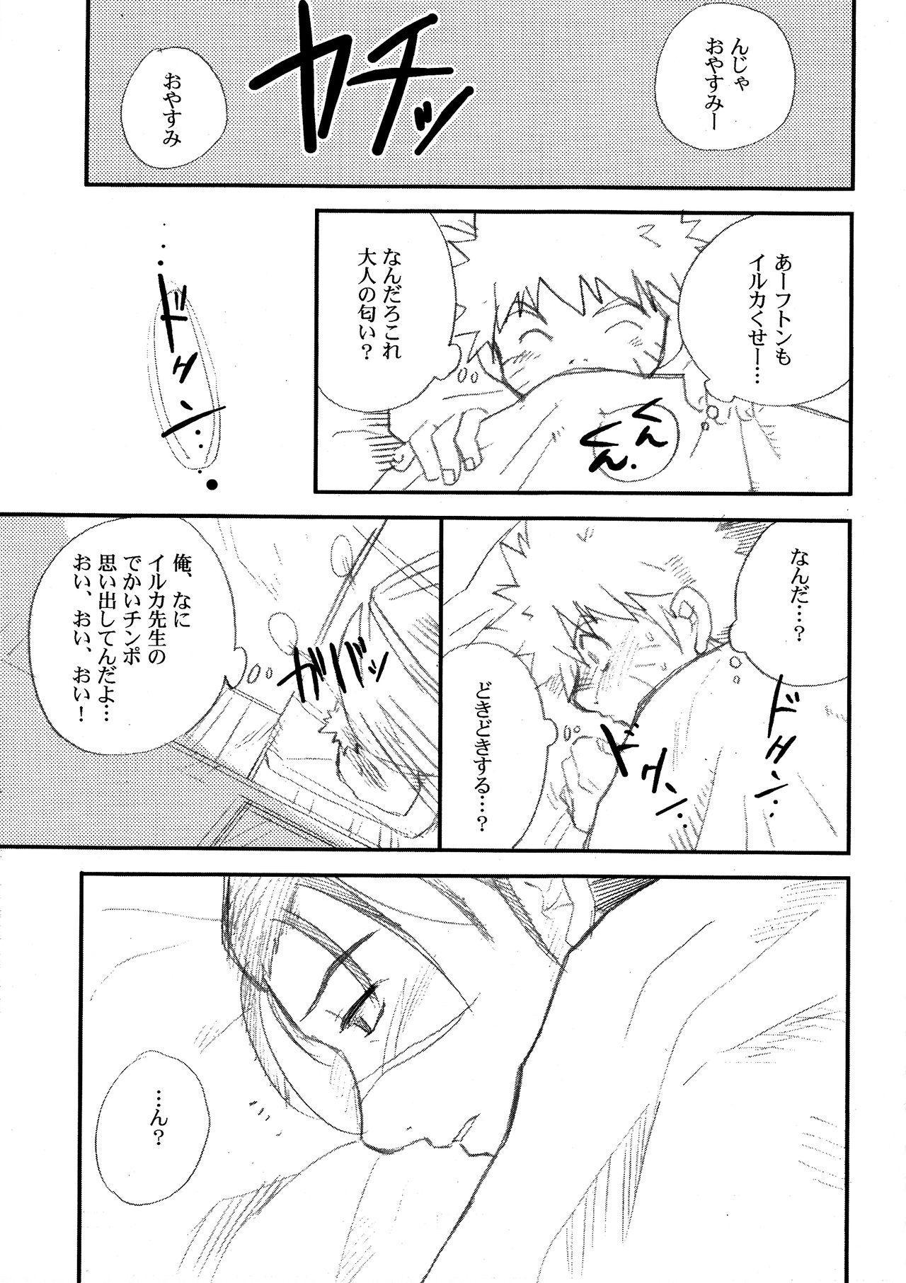 IruNaru no Wadachi 9