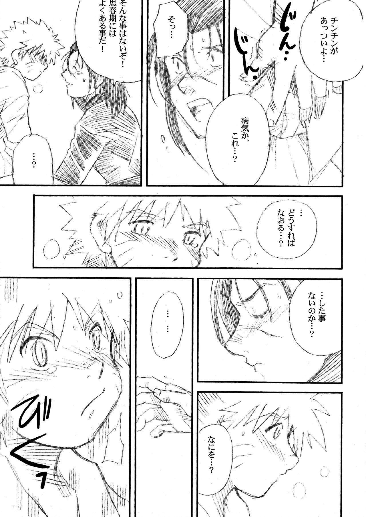 IruNaru no Wadachi 11
