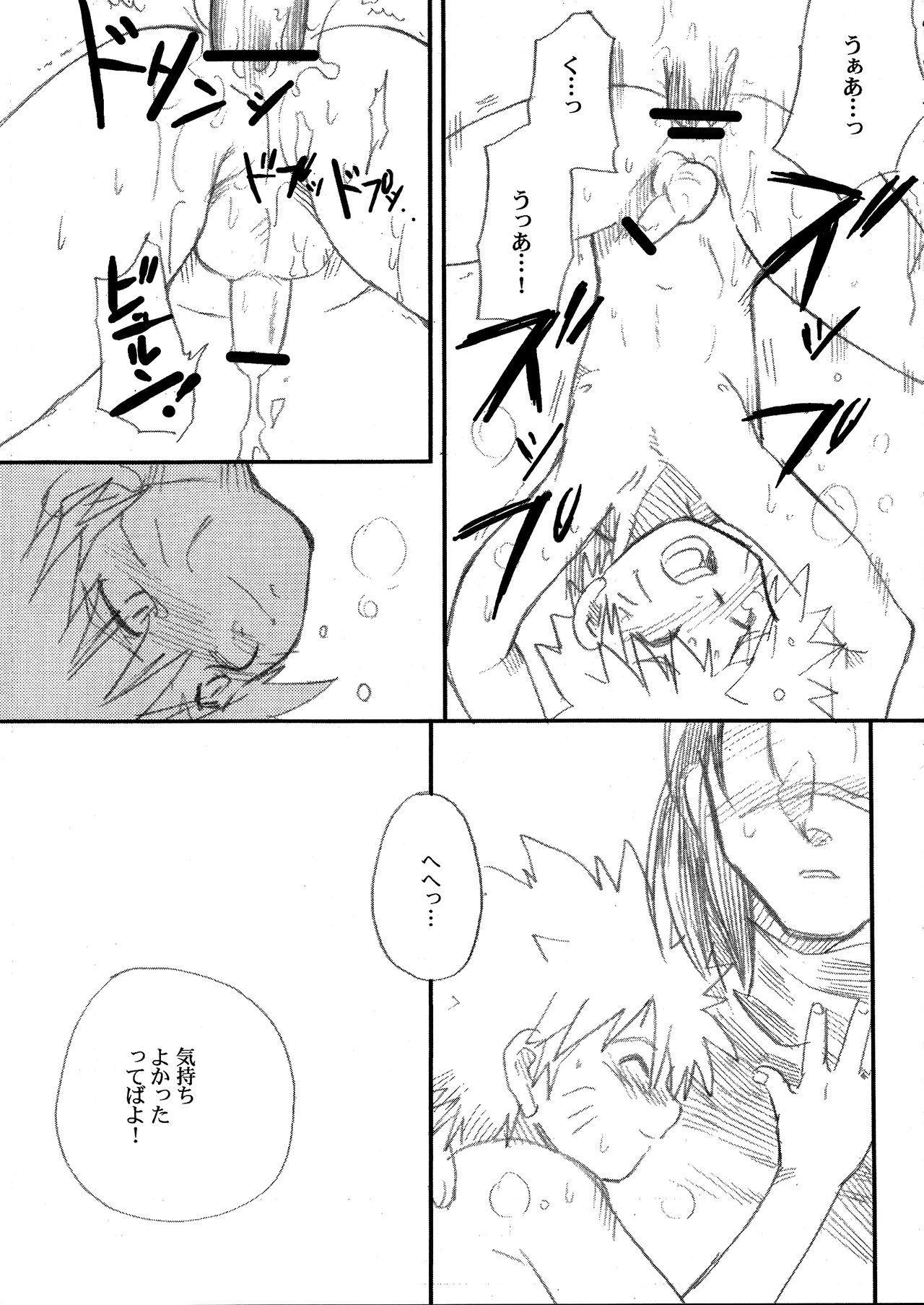 IruNaru no Wadachi 19