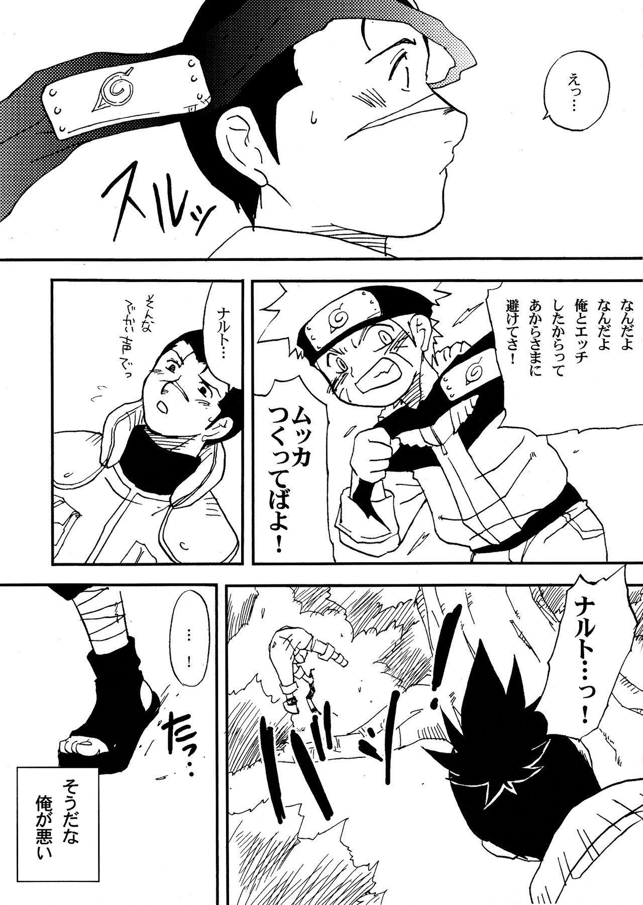 IruNaru no Wadachi 25