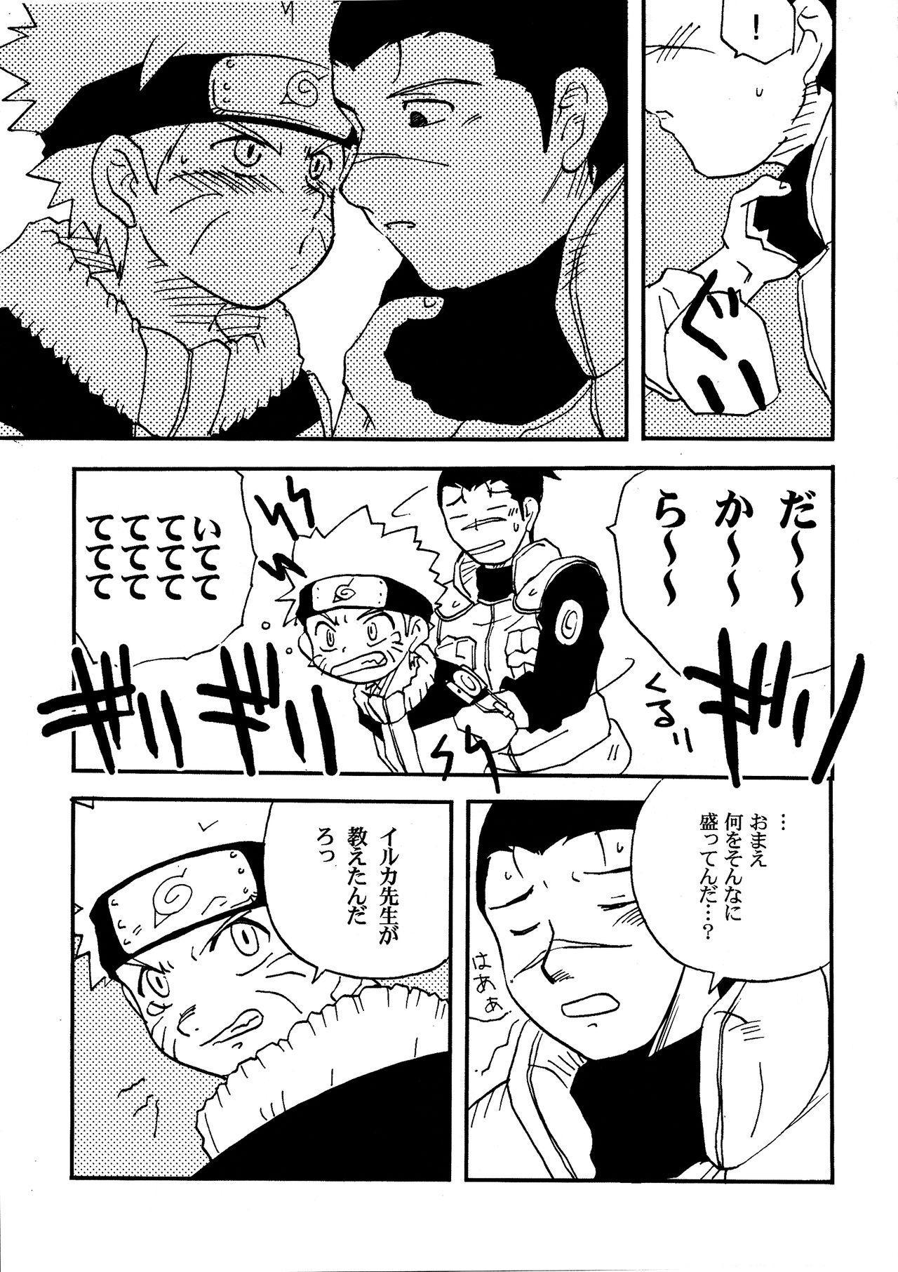 IruNaru no Wadachi 27