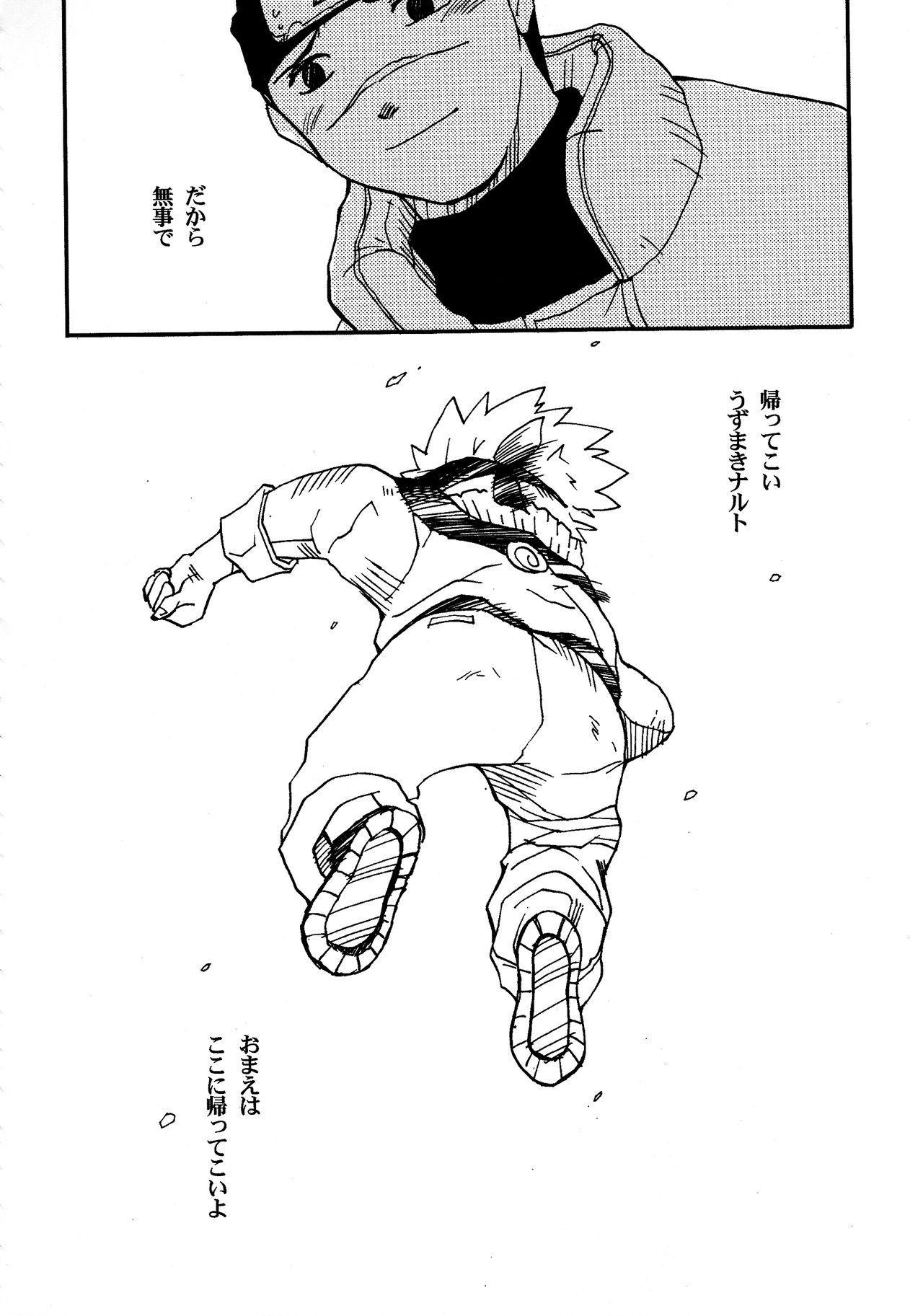 IruNaru no Wadachi 46