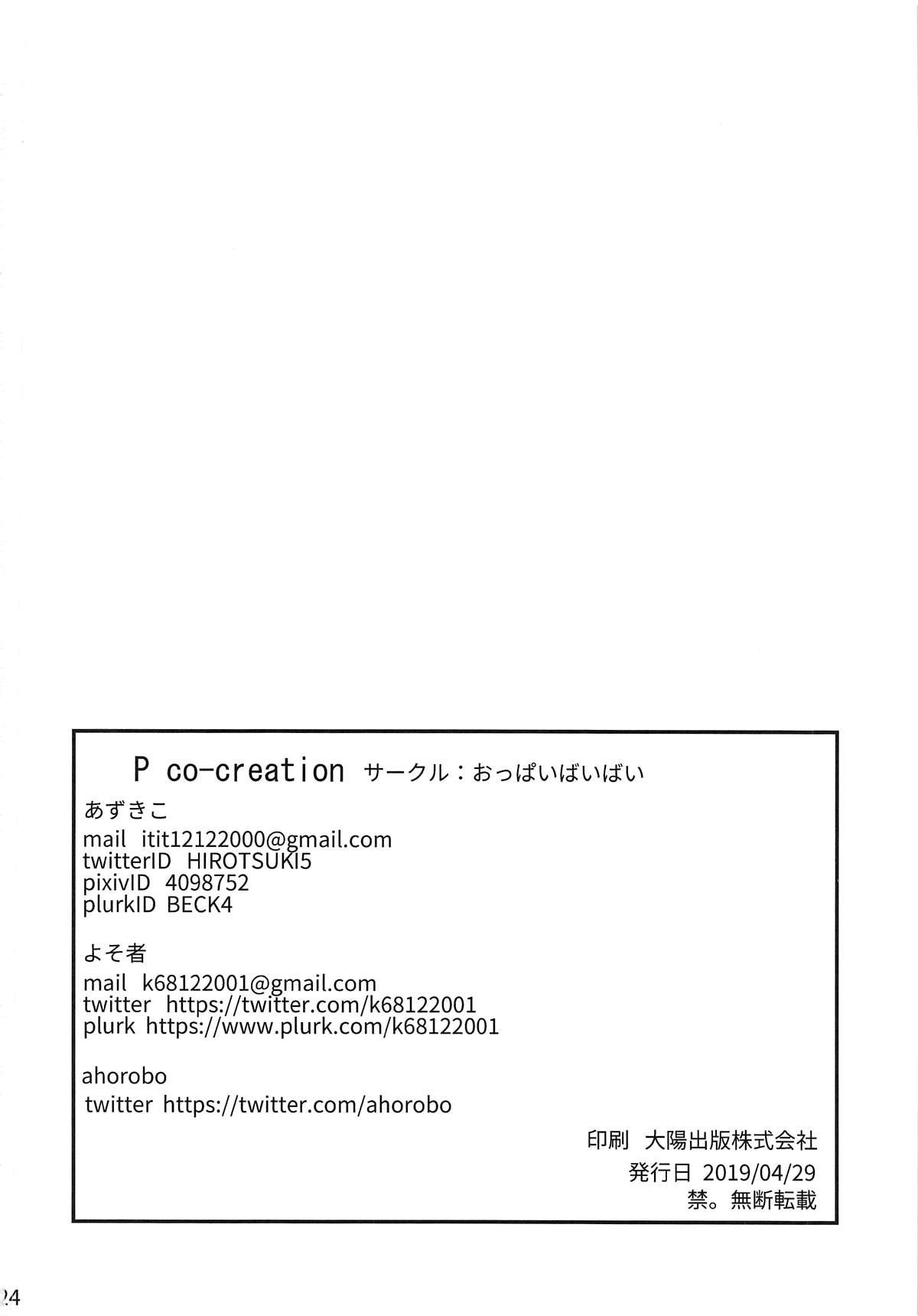 P co-creation 24