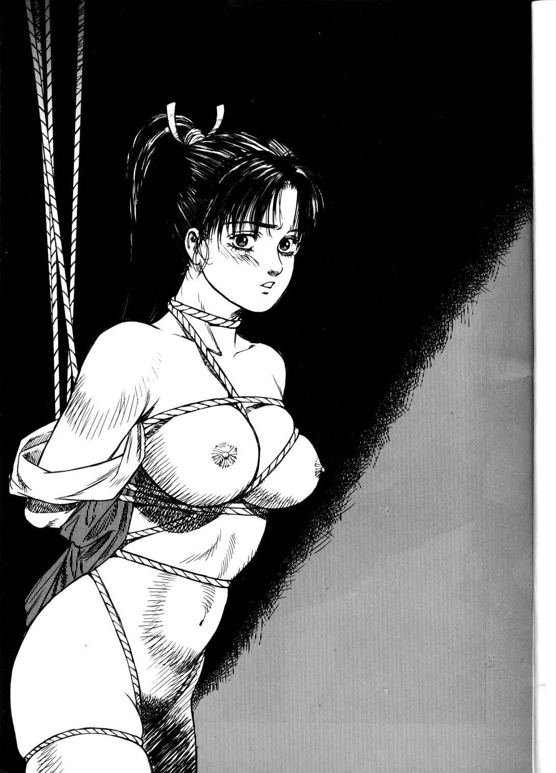 (C56) [ALPS (Ankokudou Shinkaigyo)] Ankoku-dou shinkaigyo e hua xuan-Shuu (Various) 2