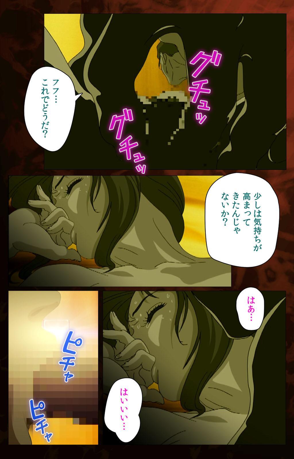 Gibo kanzenhan 13