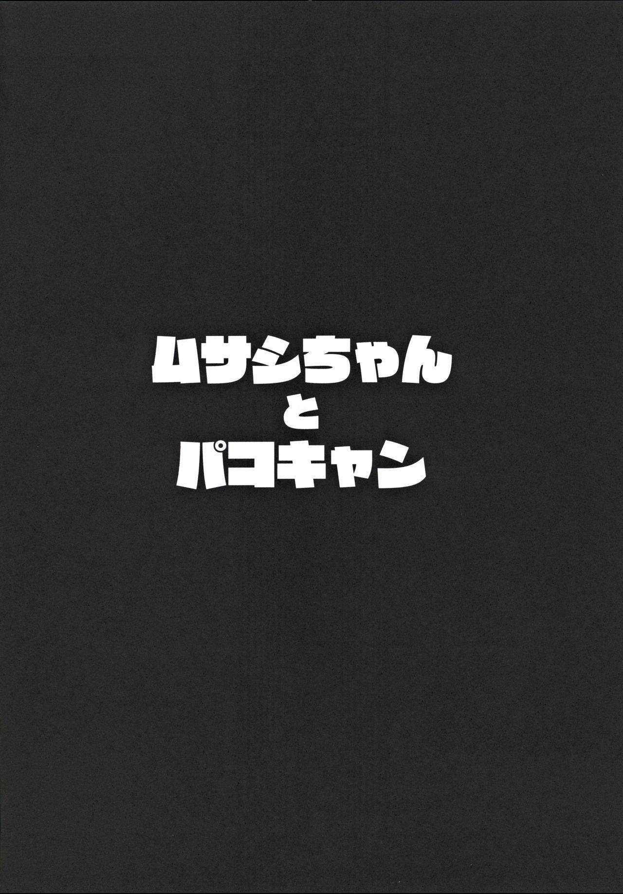 Musashi-chan to PakoCam 2