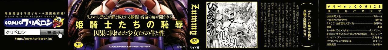 Shinki Strayer 1