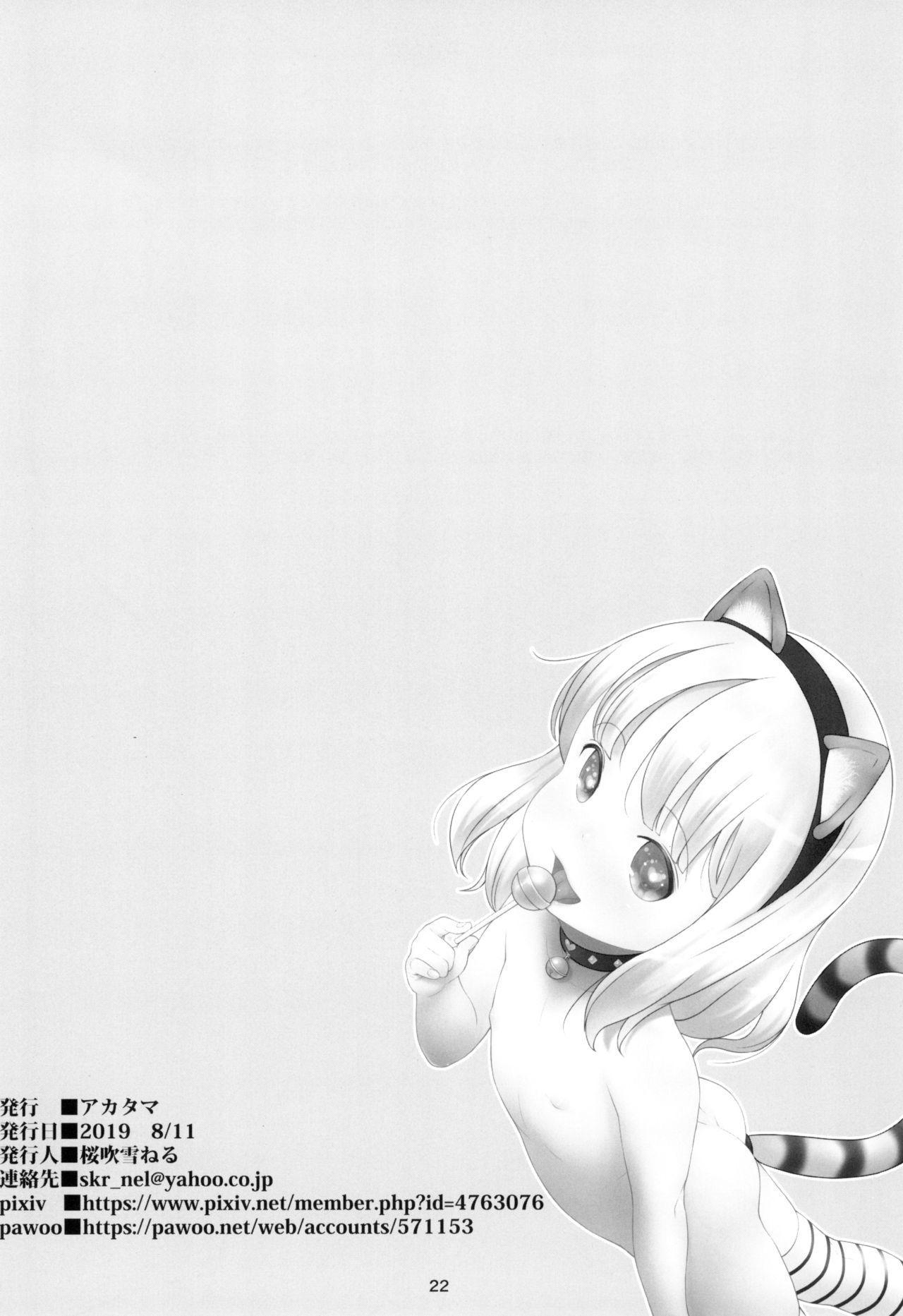 Stray cat 21
