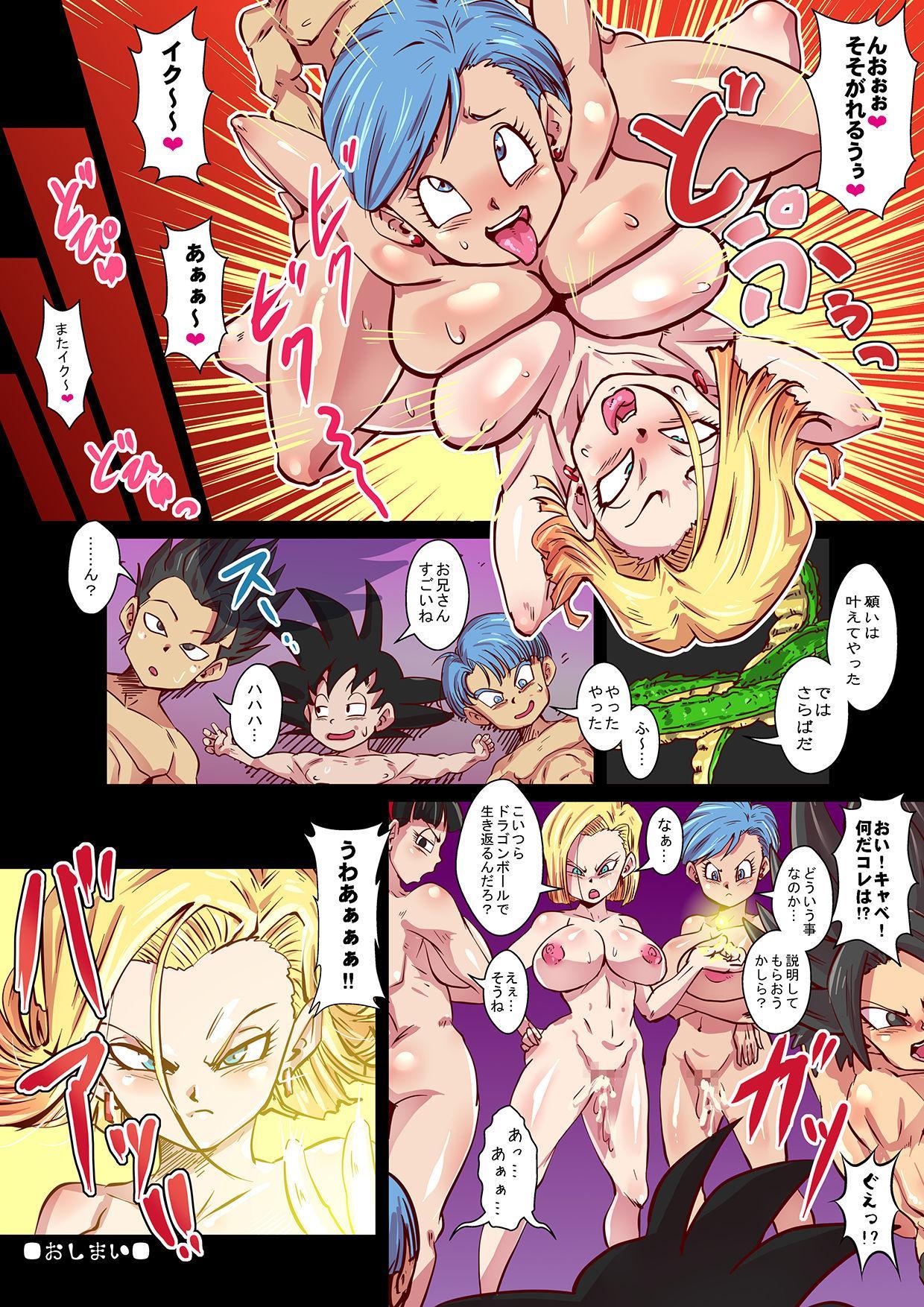 DragonParadise Minami no Shima de Hame Houdai! 14