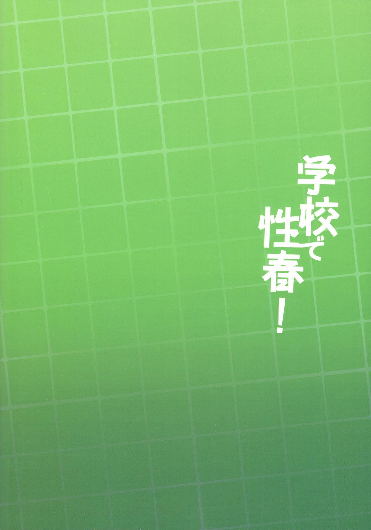 Gakkou de Seishun! 17 29