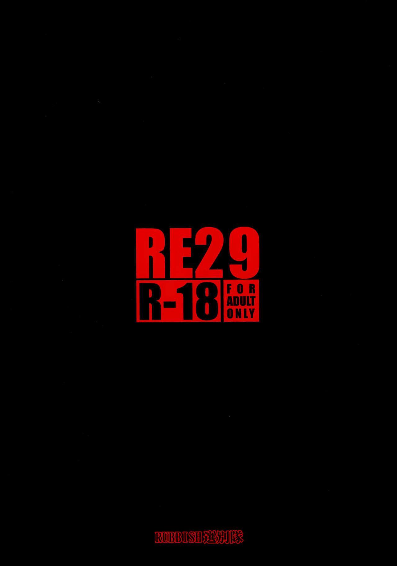RE29 33