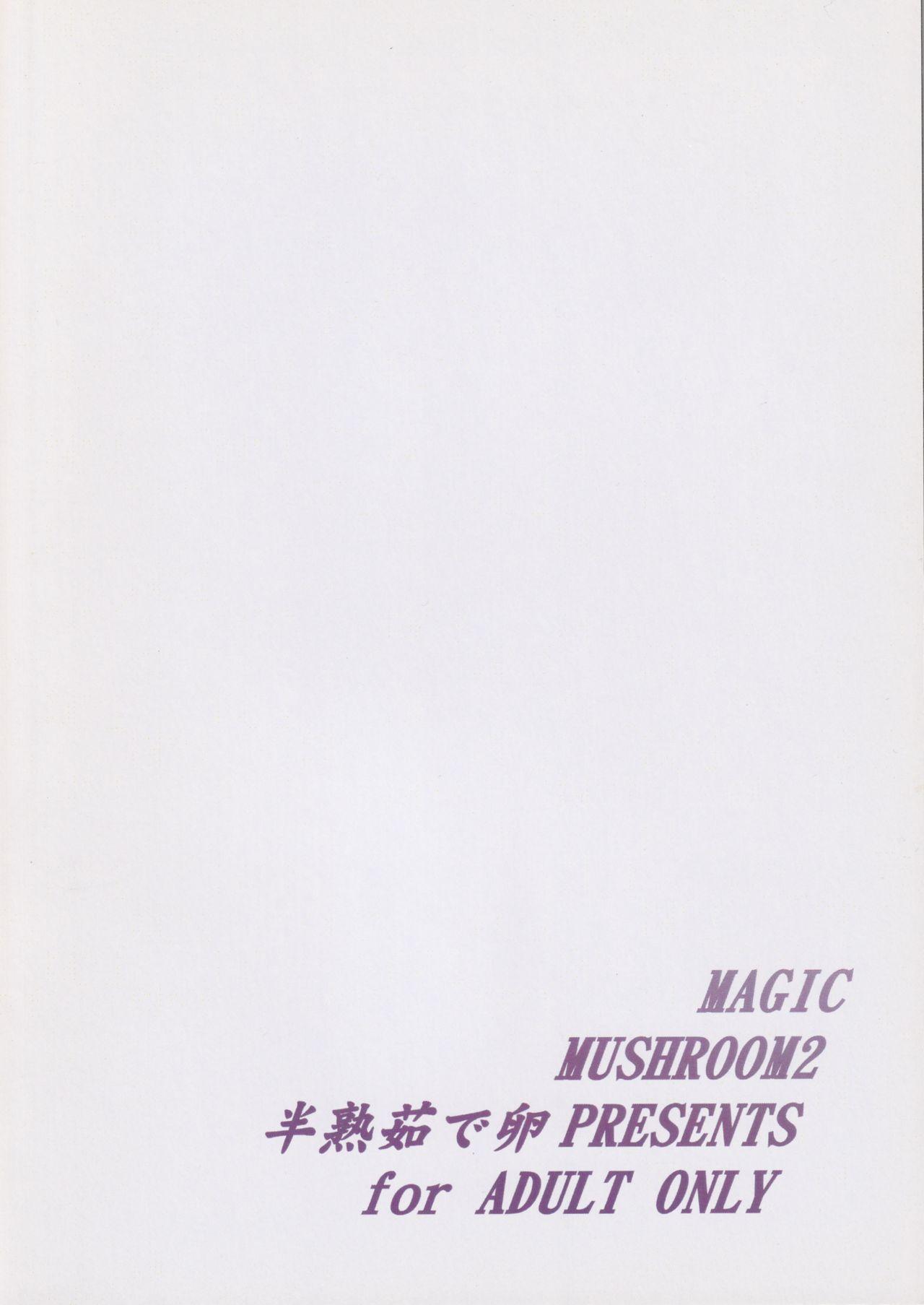 MAGIC MUSHROOM 2 17