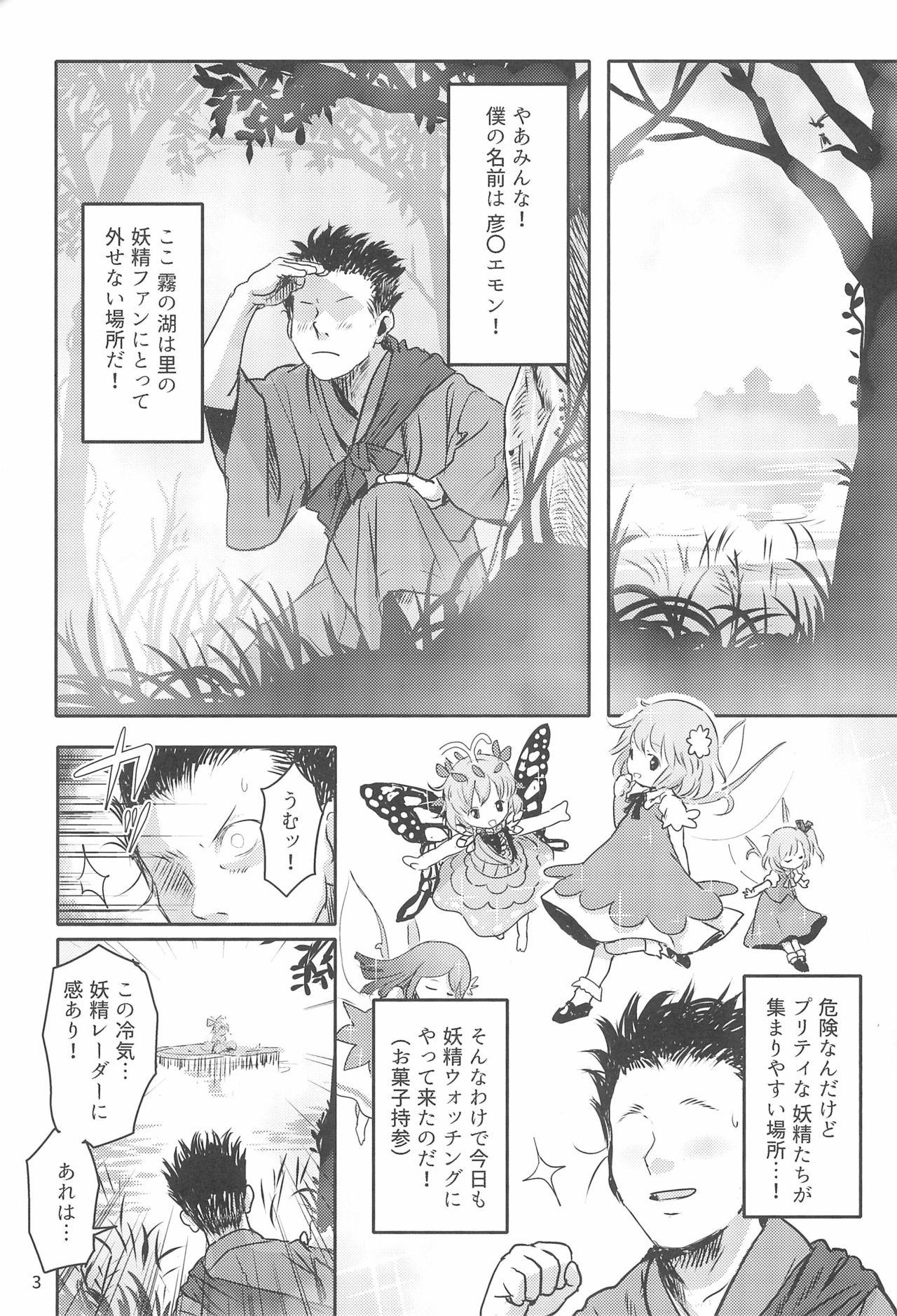 Sugoi yo! Cirno-chan! 2
