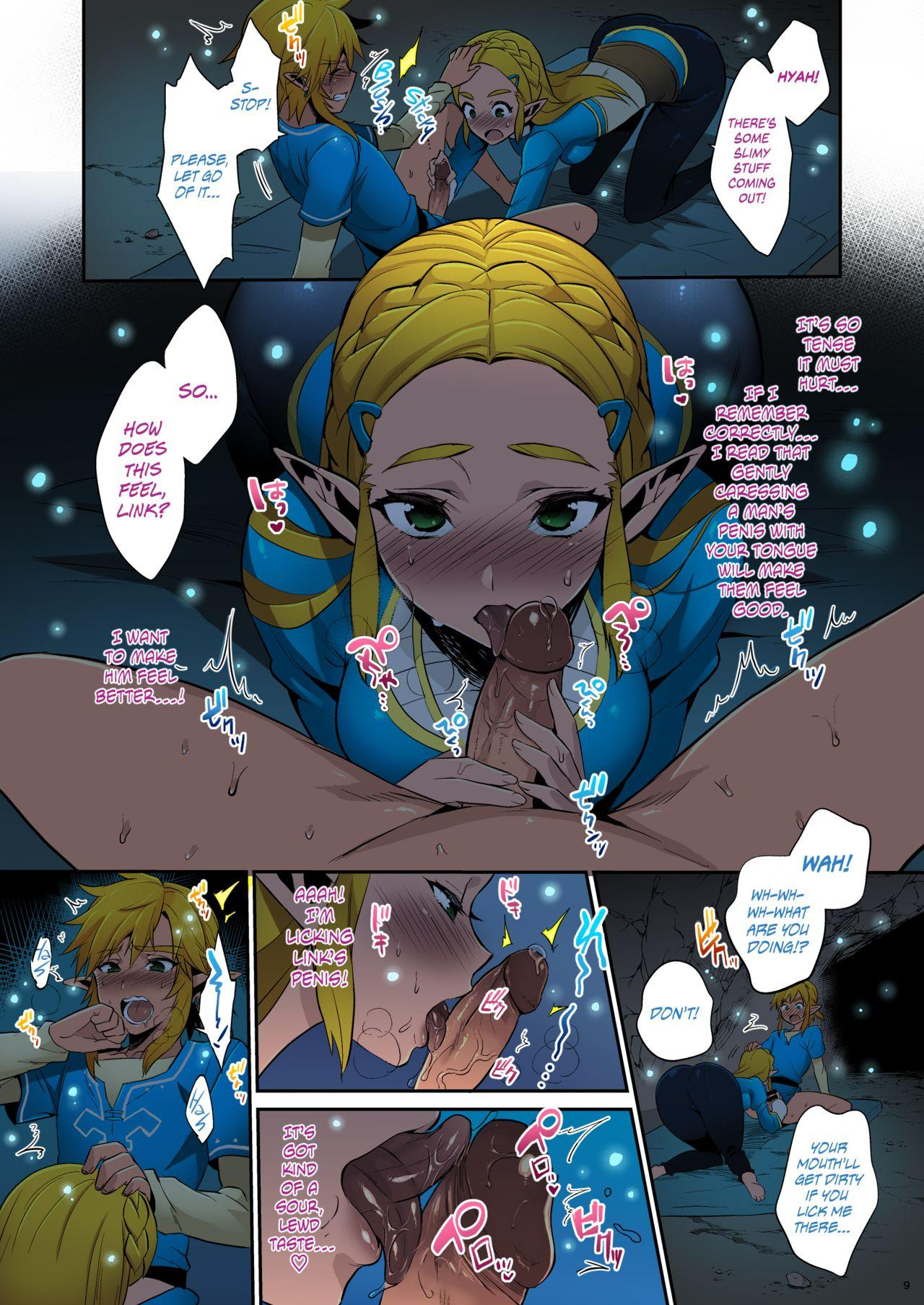 Hyrule Hanei no Tame no Katsudou!   Taking Steps to Ensure Hyrule's Prosperity! 9