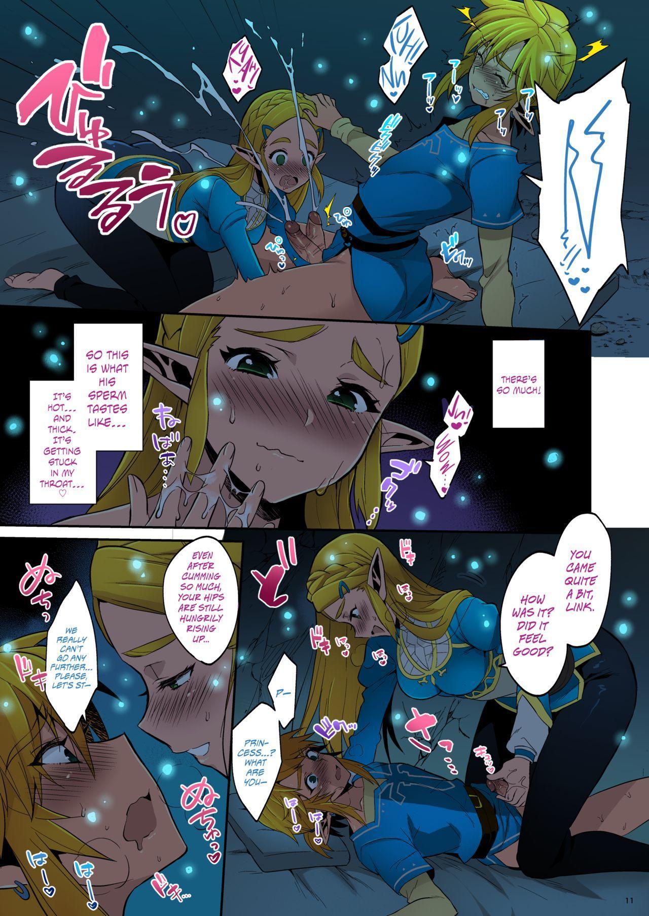 Hyrule Hanei no Tame no Katsudou!   Taking Steps to Ensure Hyrule's Prosperity! 11