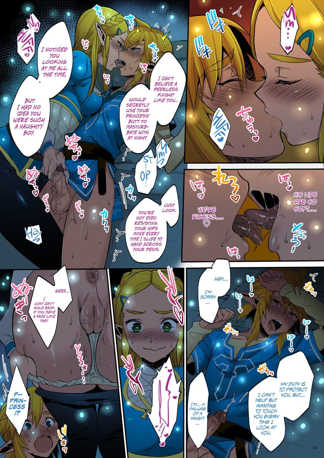 Hyrule Hanei no Tame no Katsudou!   Taking Steps to Ensure Hyrule's Prosperity! 12