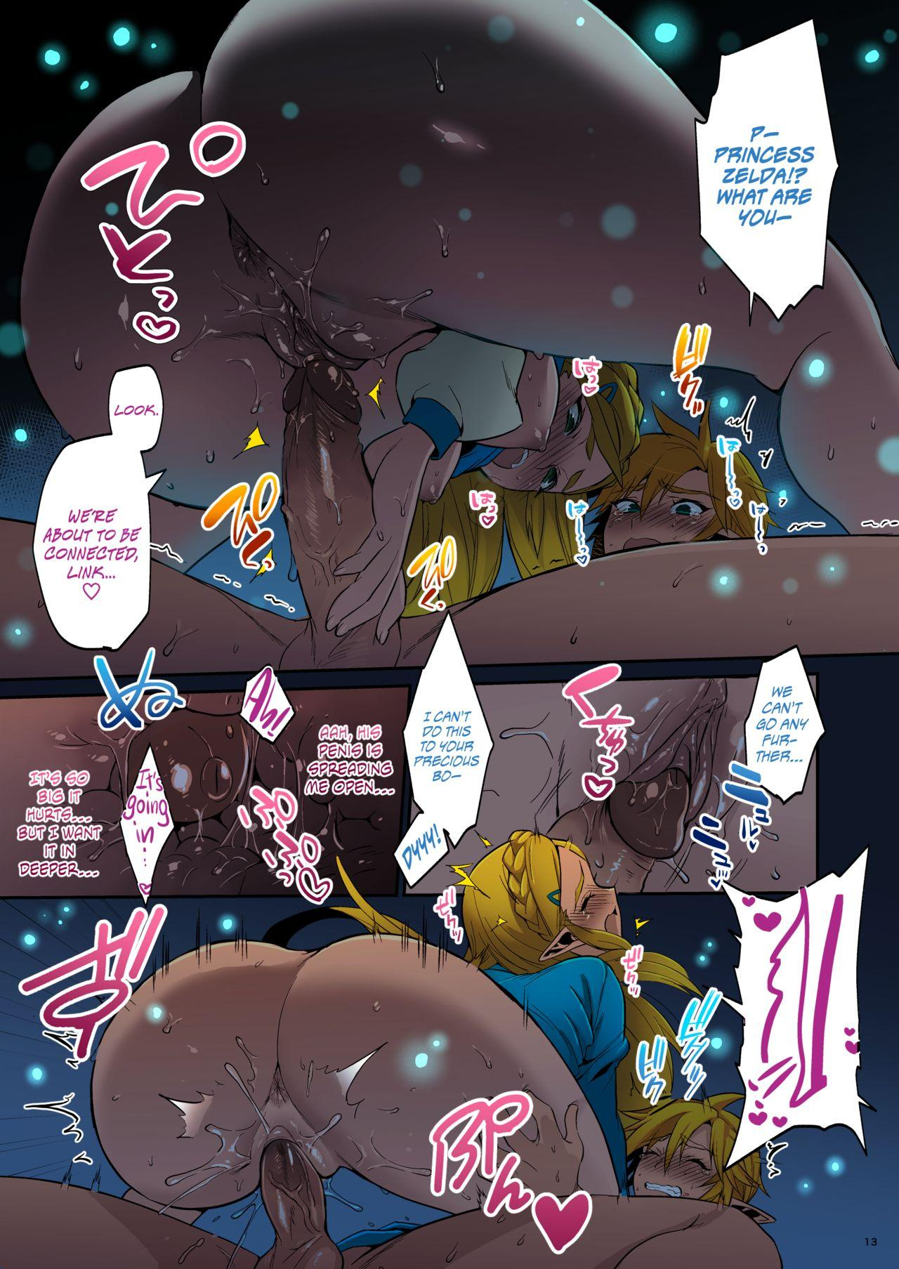 Hyrule Hanei no Tame no Katsudou!   Taking Steps to Ensure Hyrule's Prosperity! 13