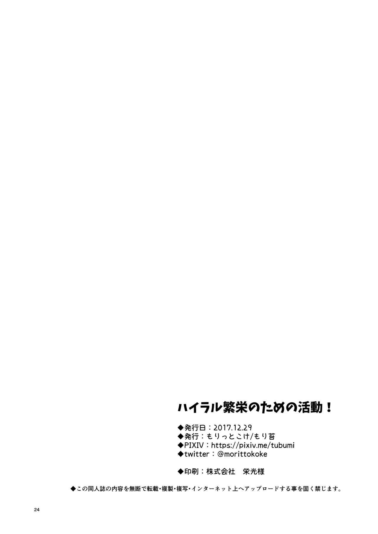 Hyrule Hanei no Tame no Katsudou!   Taking Steps to Ensure Hyrule's Prosperity! 24