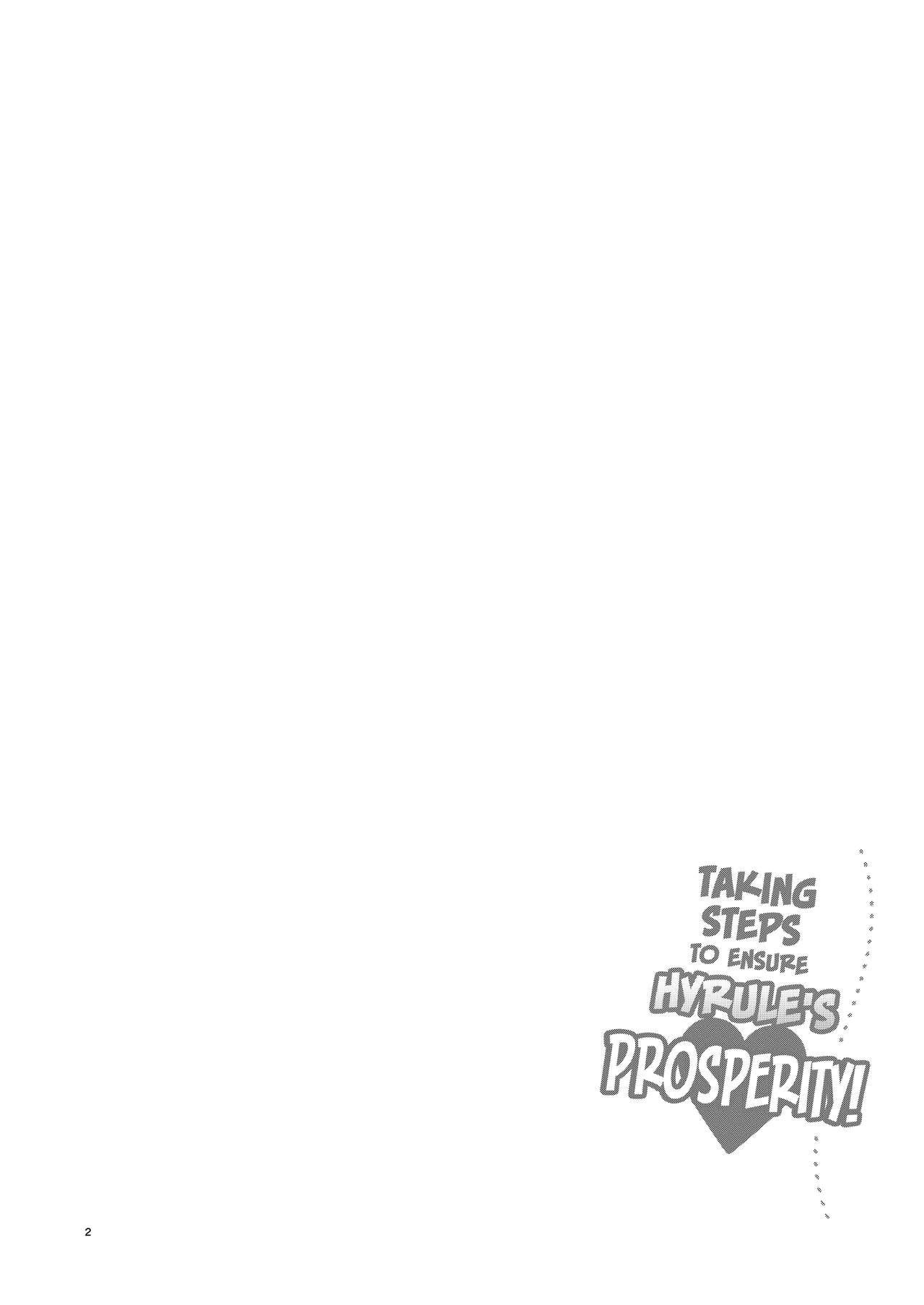 Hyrule Hanei no Tame no Katsudou!   Taking Steps to Ensure Hyrule's Prosperity! 2