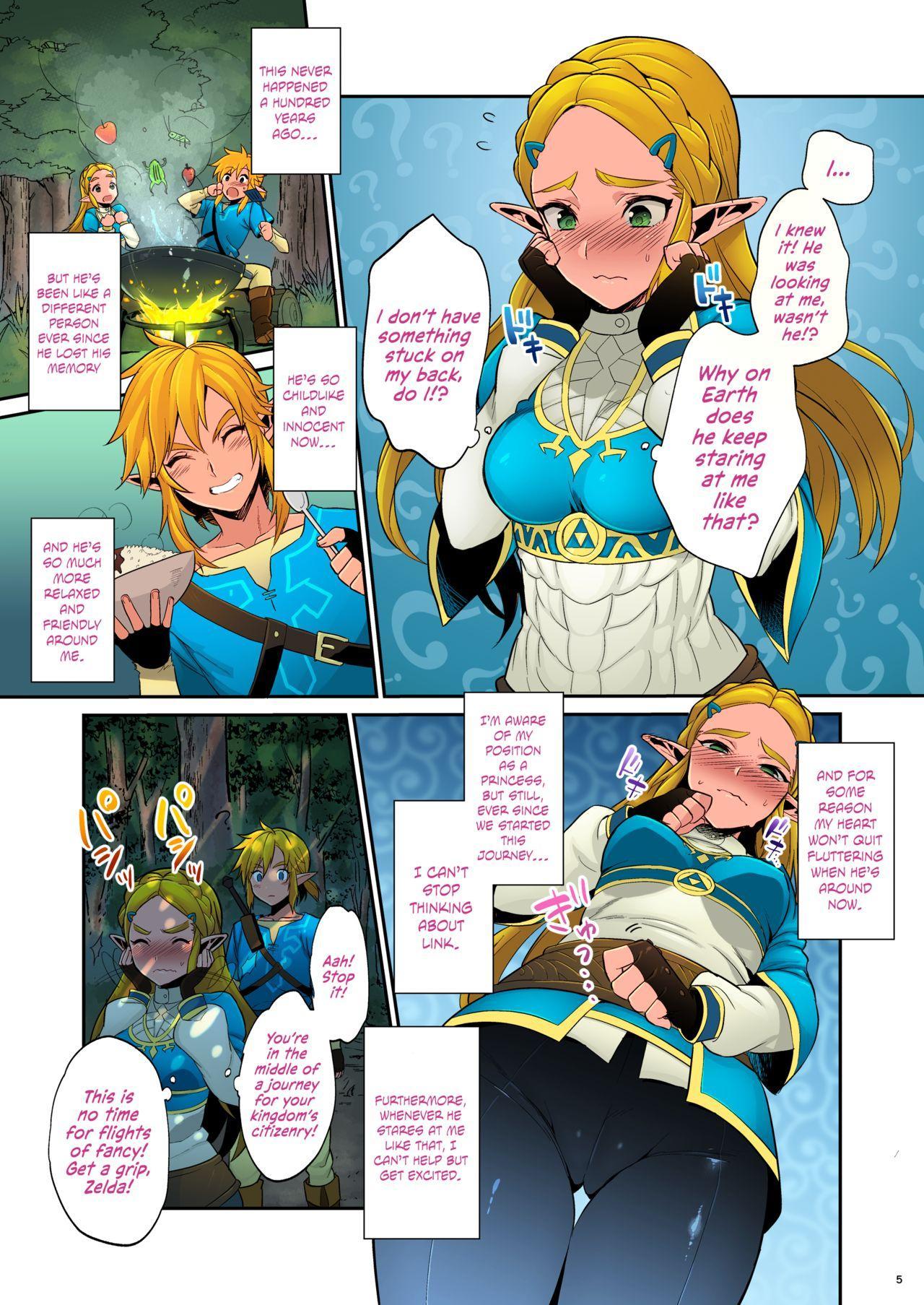 Hyrule Hanei no Tame no Katsudou!   Taking Steps to Ensure Hyrule's Prosperity! 5