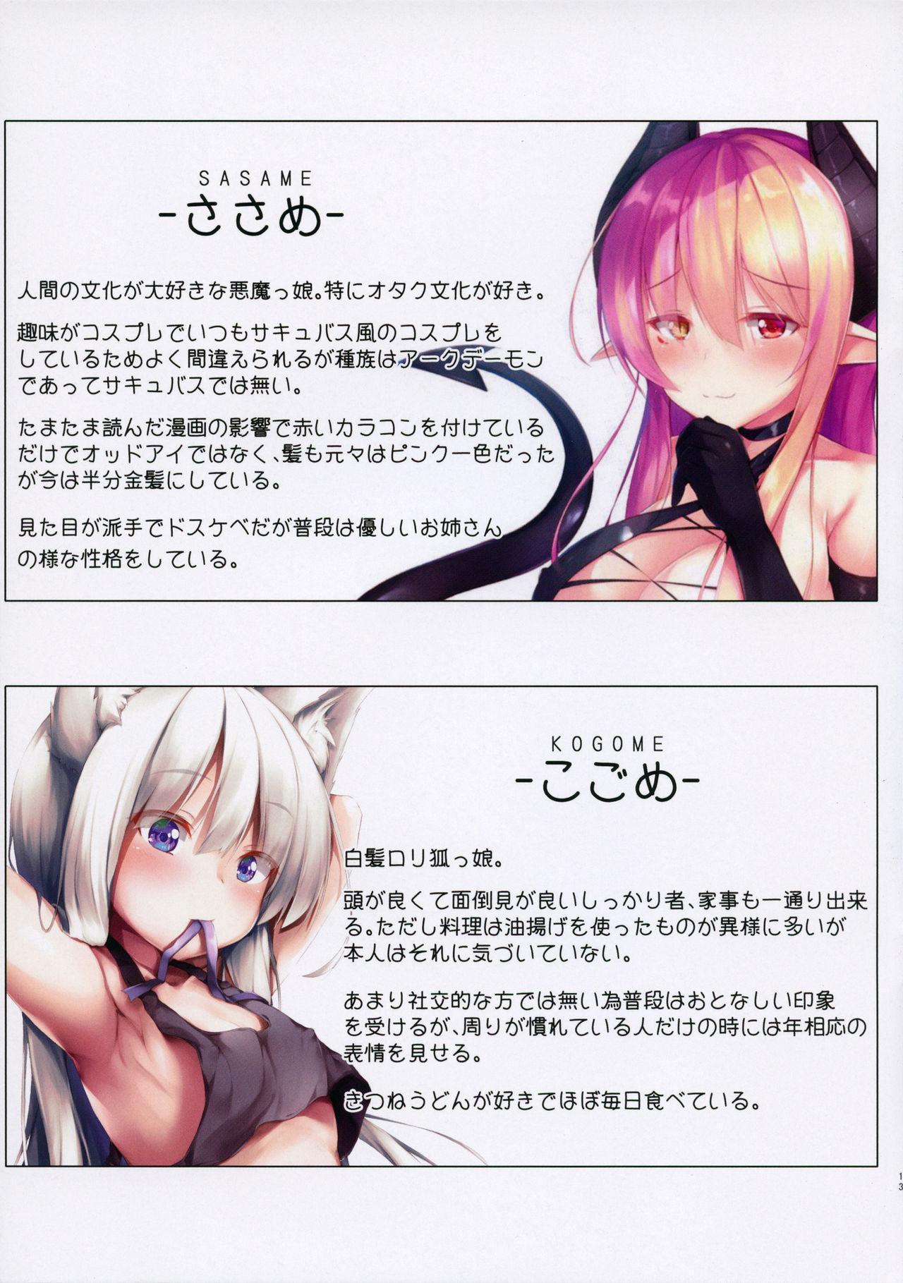 UCHINOKO ART BOOK 11