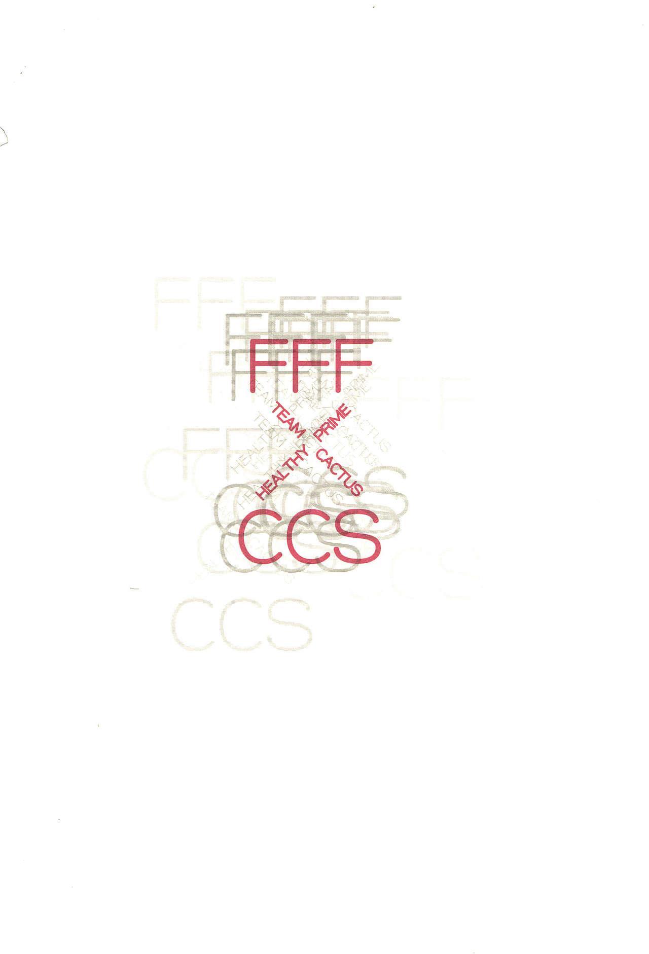 FFF X CCS 31