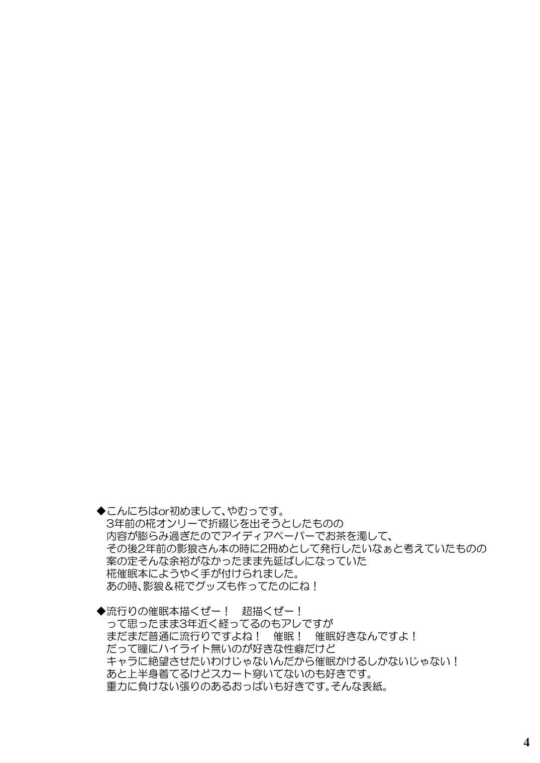 Tengu hacking 2