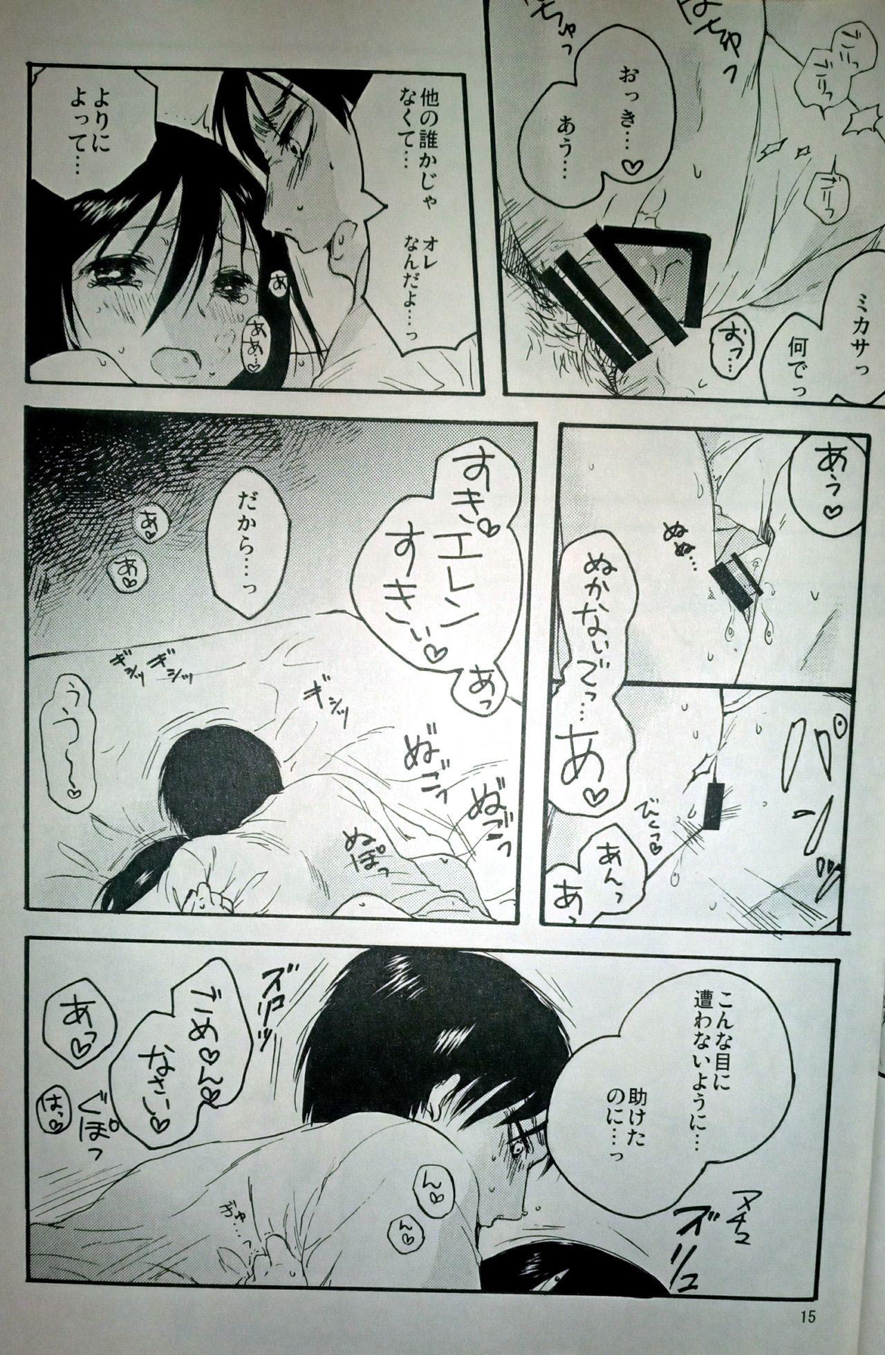 (C86) [iron (Kanae)] 21-sai to 9-sai no Mikasa ni Aisarete Yoru mo Nemurenai Eren no Hanashi (Shingeki no Kyojin) 15