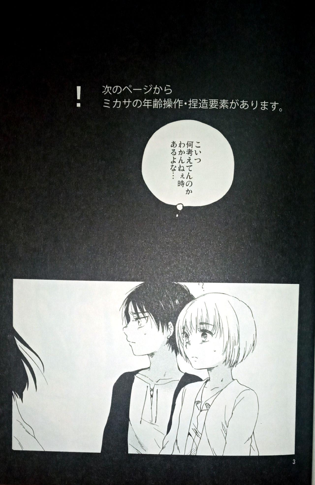 (C86) [iron (Kanae)] 21-sai to 9-sai no Mikasa ni Aisarete Yoru mo Nemurenai Eren no Hanashi (Shingeki no Kyojin) 3