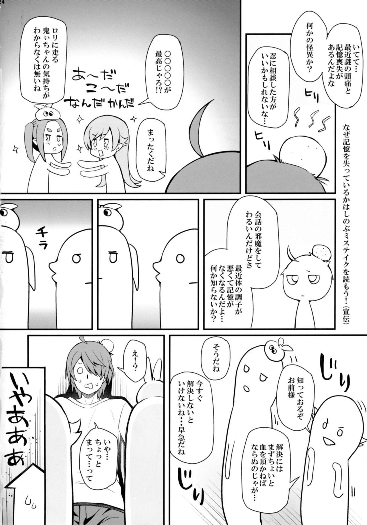 Pachimonogatari Part 14: Yotsugi Success 23