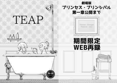 TEAP 1