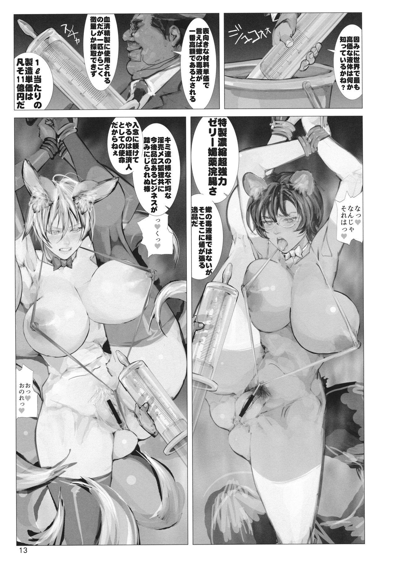 高機動夜鷹狐狗狸さん2 11