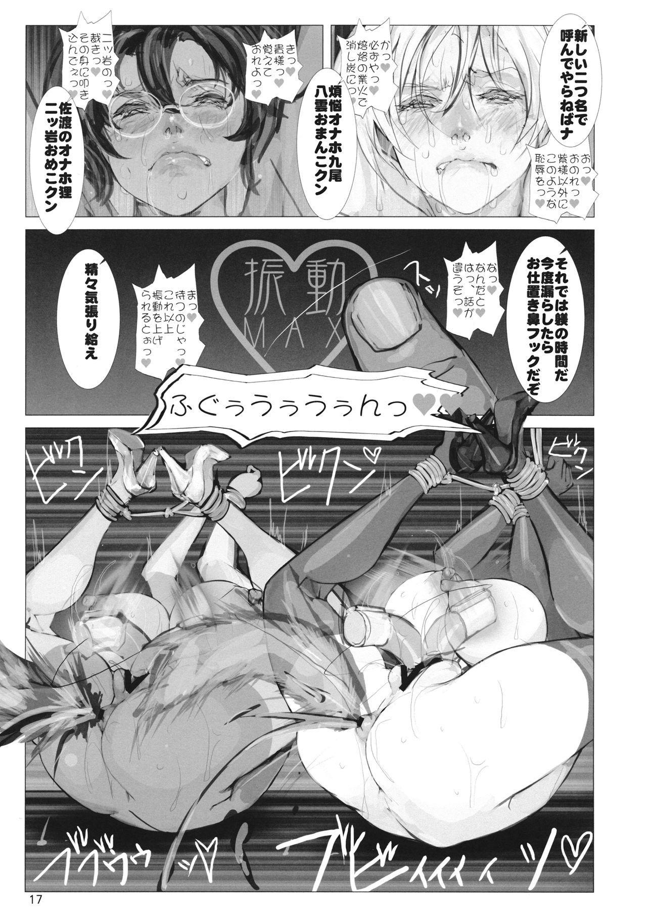 高機動夜鷹狐狗狸さん2 15