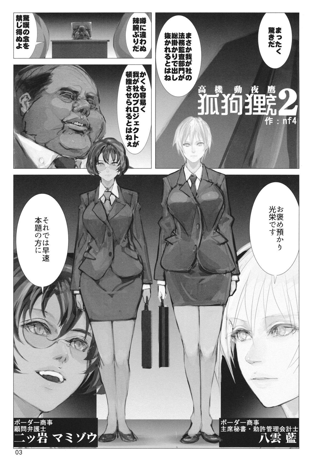 高機動夜鷹狐狗狸さん2 1