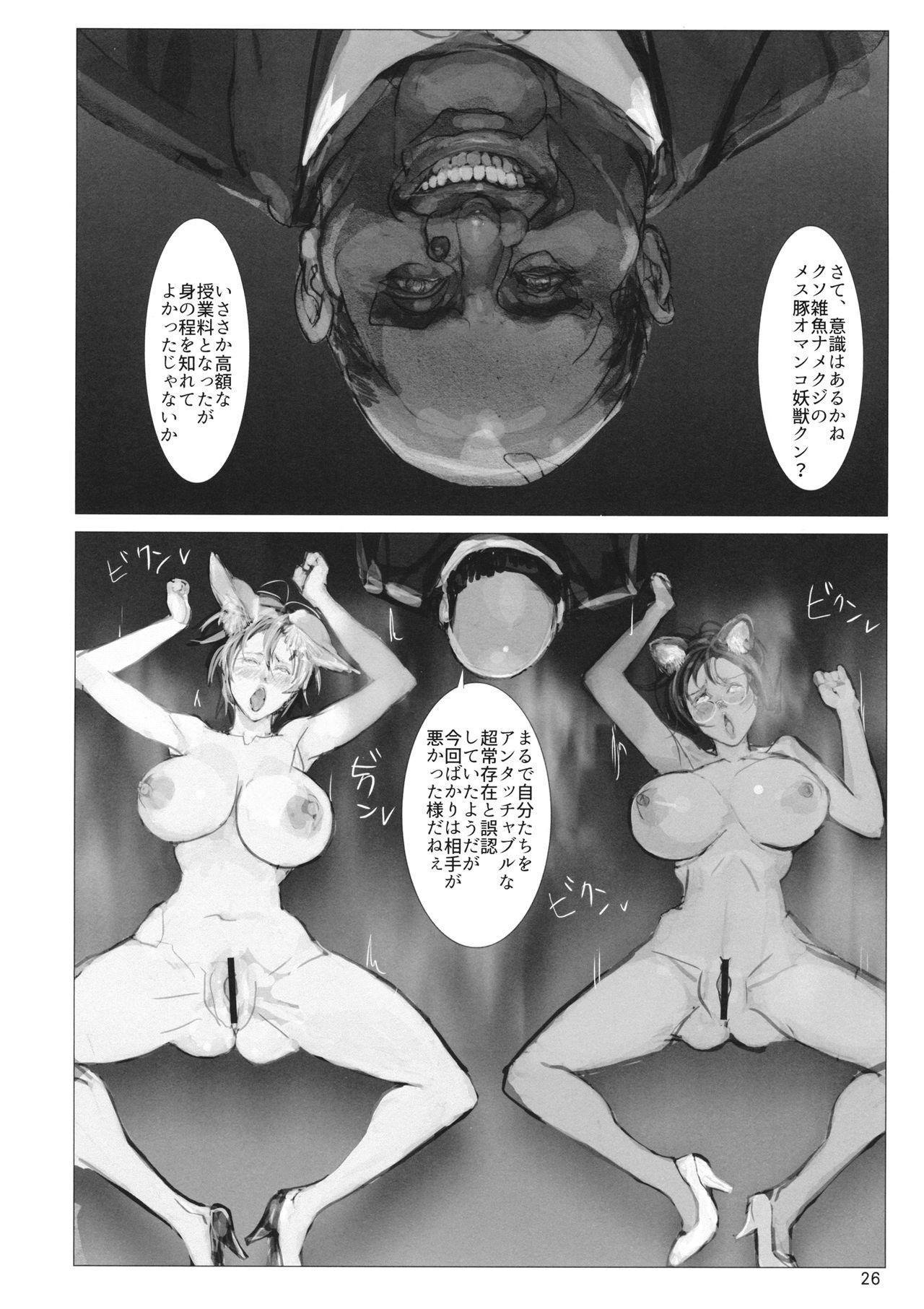 高機動夜鷹狐狗狸さん2 24