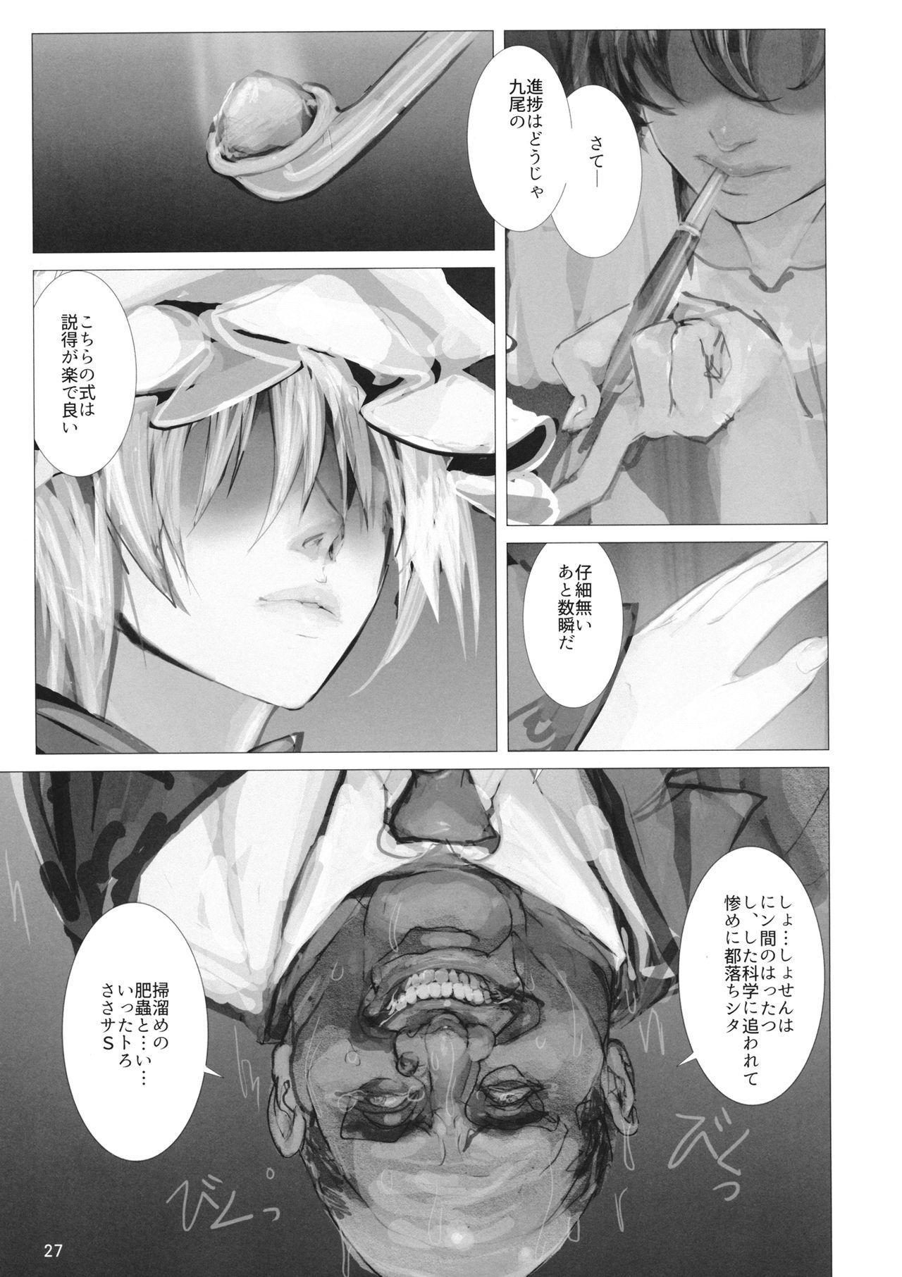 高機動夜鷹狐狗狸さん2 25