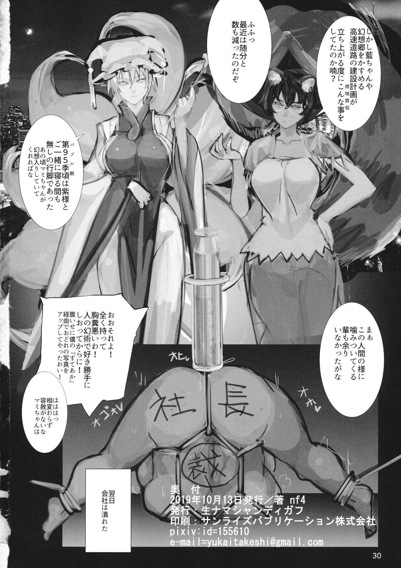 高機動夜鷹狐狗狸さん2 28