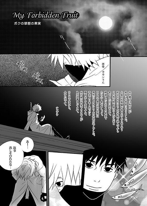Boku no Kindan no Kajitsu - My Forbidden Fruit 2